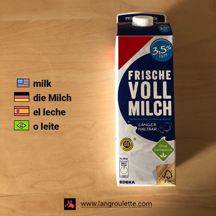 Flashcard with a photo of a milk box with translations to: [english] milk, [german] die Milch, [espanish] el leche, [portuguese] o leite.